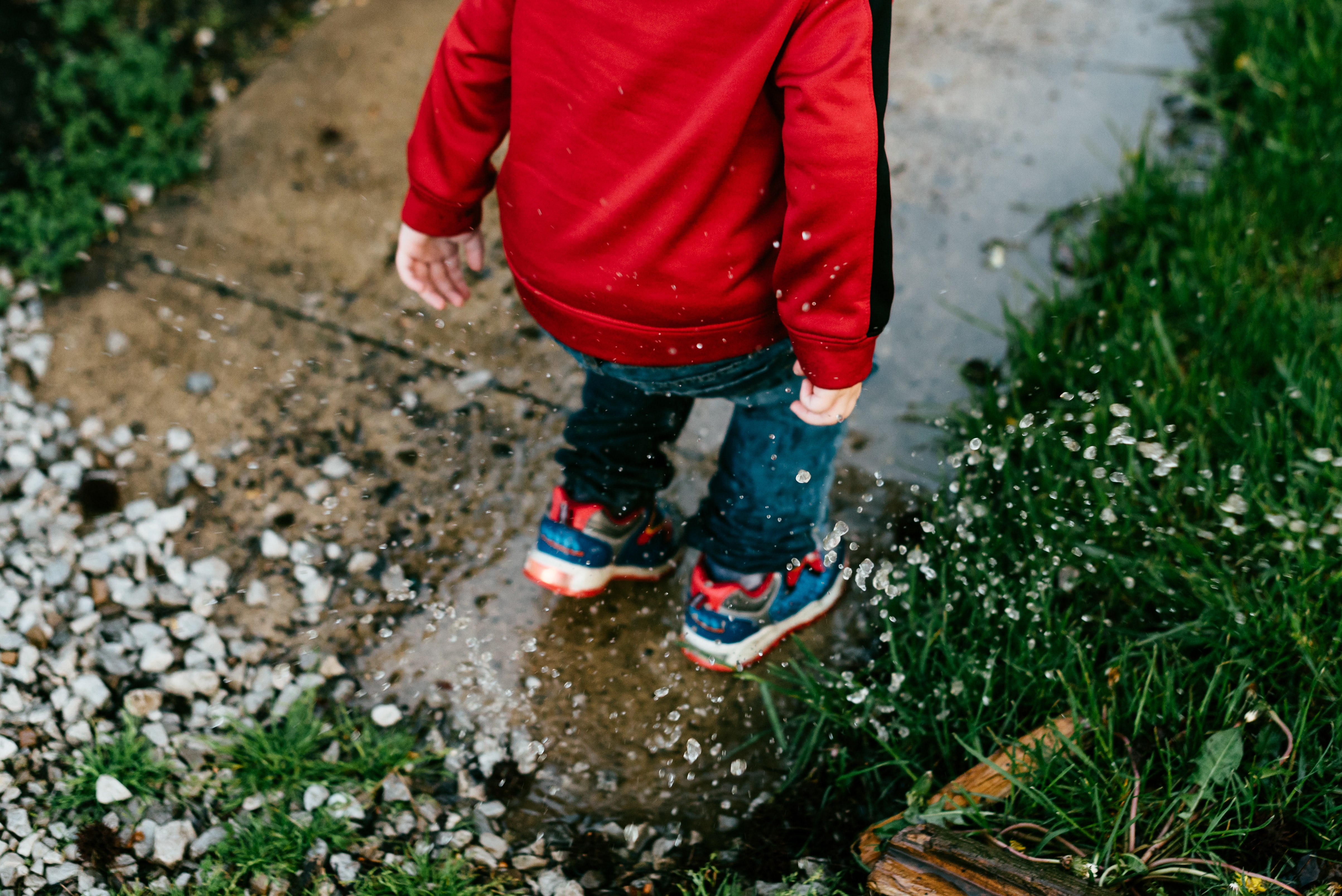Should You Use a Baby Leash For Your Toddler